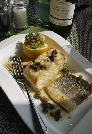 Sea-Bass-and-Halibut-Paysanne